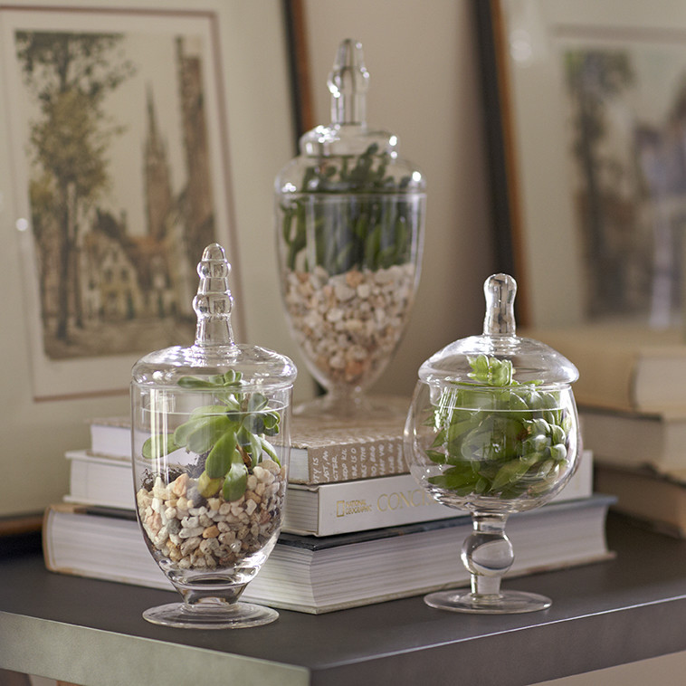 Pottery Barn Classic Glass Apothecary Jars Decor Look Alikes