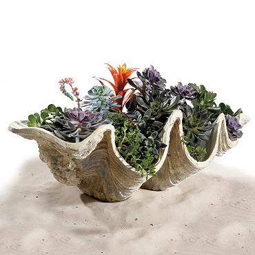 Decor Look Alikes | Grandid Road Giant Clam Shells