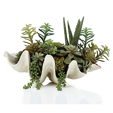 Decor Look Alikes | Z Gallerie Succulent Shell Pot